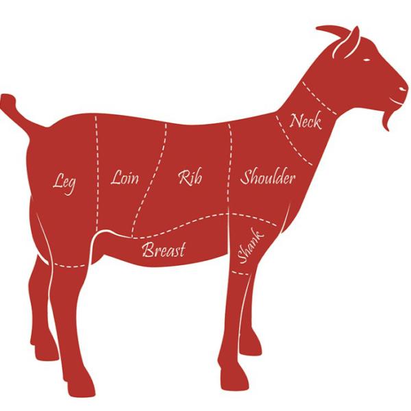 goat-square